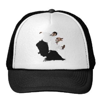 Aikido suwari hats