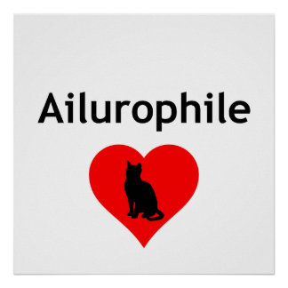 Ailurophile Póster