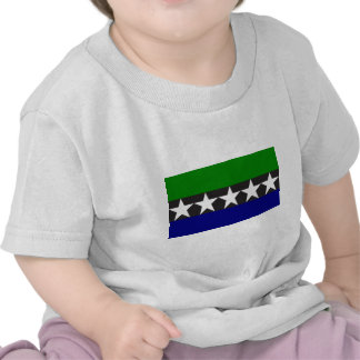 Aimeliik, Pakistan flag Tee Shirts