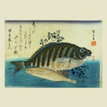 Ainame & Shima-hata from A Shoal of Fishes