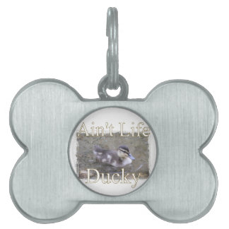 Ain't Life Ducky Pet Name Tag