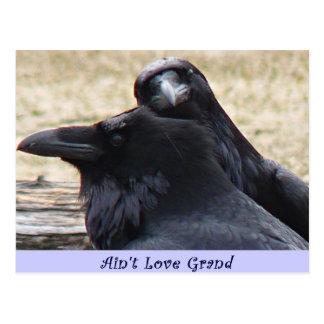 Ain't Love Grand Ravens in love postcard