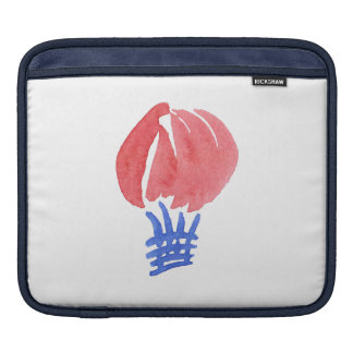 Air Balloon iPad Sleeve
