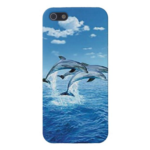 Air Dolphin iPhone 5 Case