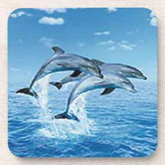 Air Dolphins Coasters