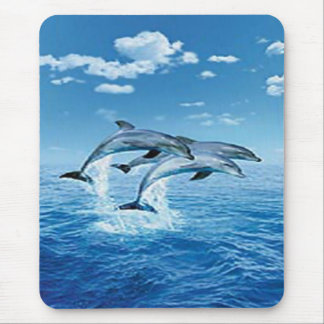 Air Dolphins Mouse Pad