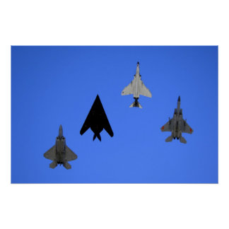 Air Force 49th Fighter Wing Formation Poster