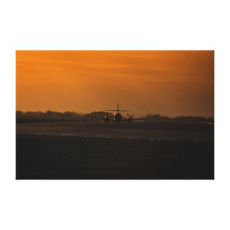 Air King grounded Canvas Prints