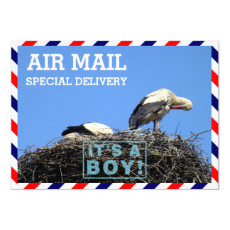 Air Mail Envelope With Storks Sitting in a Nest 5x7 Paper Invitation Card