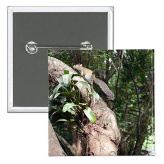 air plant in tree with squirrel hiding pinback button