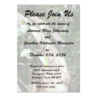 air plant in tree with squirrel hiding 5x7 paper invitation card
