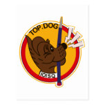 Air Self Defense Force 101SQ Post Card