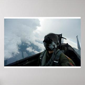 Airborne Selfie Poster