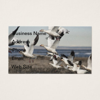 Airborne Snow Geese Business Card