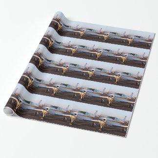 Aircraft at Page, Arizona, USA 11 Gift Wrapping Paper