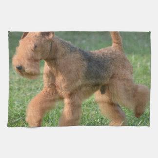 Airdale dulce Terrier Toalla De Mano