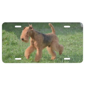 Airdale dulce Terrier Placa De Matrícula