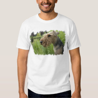 airdale-terrier-3 playera