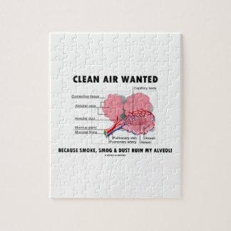 Aire limpio querido porque ruina del polvo de la puzzle
