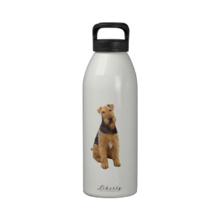 Airedael Terrier (c) - sentándose Botellas De Agua Reutilizables