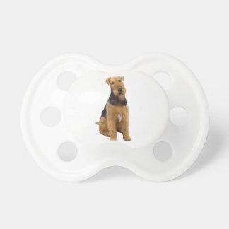 Airedael Terrier (c) - sentándose Chupete De Bebe