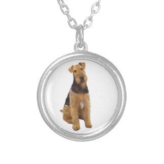 Airedael Terrier (c) - sentándose Colgantes