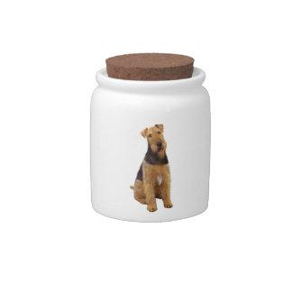 Airedael Terrier (c) - sentándose Jarras Para Caramelos