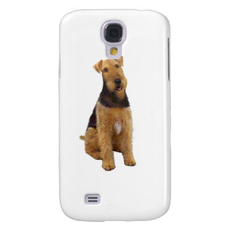 Airedael Terrier (c) - sentándose