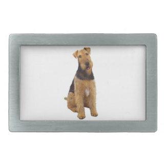 Airedael Terrier (c) - sentándose Hebillas De Cinturon Rectangulares