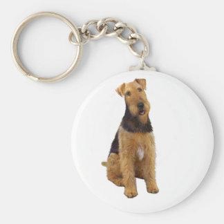 Airedael Terrier (c) - sentándose Llaveros