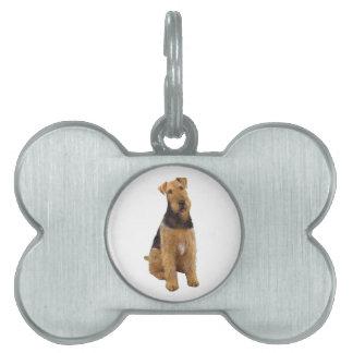 Airedael Terrier (c) - sentándose Placa De Mascota
