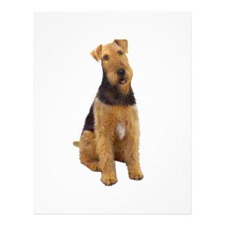 Airedael Terrier (c) - sentándose Membrete Personalizado