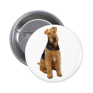 Airedael Terrier (c) - sentándose Pins