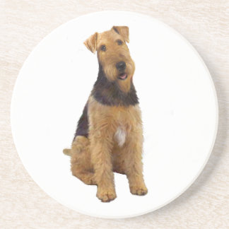 Airedael Terrier (c) - sentándose Posavasos Manualidades