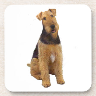 Airedael Terrier (c) - sentándose Posavasos De Bebida