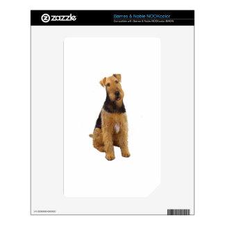 Airedael Terrier (c) - sentándose Calcomanía Para El NOOK Color