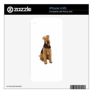 Airedael Terrier (c) - sentándose iPhone 4 Skin