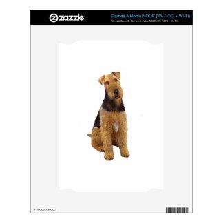 Airedael Terrier (c) - sentándose Skin Para El NOOK