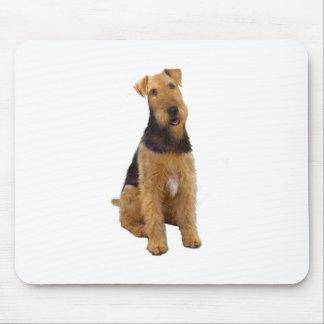 Airedael Terrier (c) - sentándose Tapete De Raton