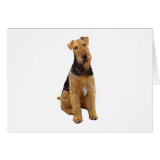 Airedael Terrier (c) - sentándose Tarjeta