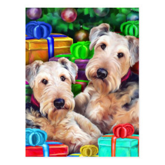 Airedale Christmas Open Now Post Cards
