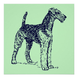 Airedale Dog Poster