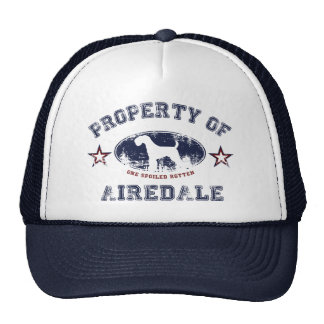 Airedale Hat