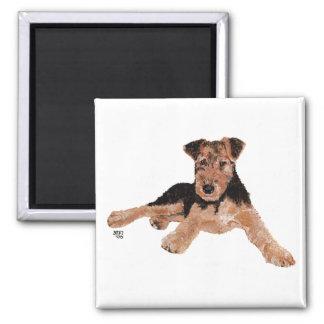 Airedale, Lakeland, perrito de Terrier galés Imán Cuadrado