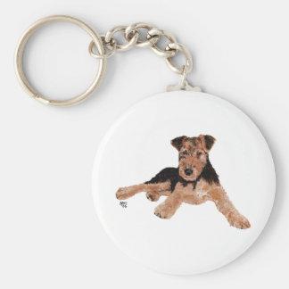 Airedale, Lakeland, perrito de Terrier galés Llavero