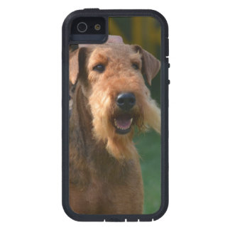 Airedale lindo Terrier iPhone 5 Case-Mate Cárcasa