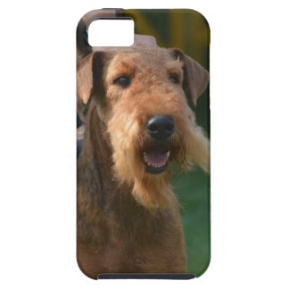 Airedale lindo Terrier iPhone 5 Protectores