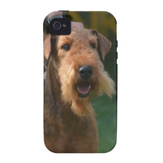 Airedale lindo Terrier Case-Mate iPhone 4 Carcasa