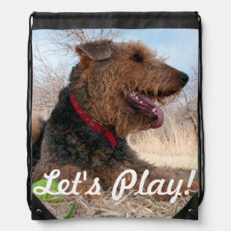 Airedale playing ball in dried grasses drawstring backpack