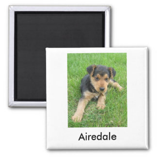 Airedale Puppy Magnet